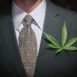 CANADA: Sommelier en cannabis, nouvelle diversification du métier